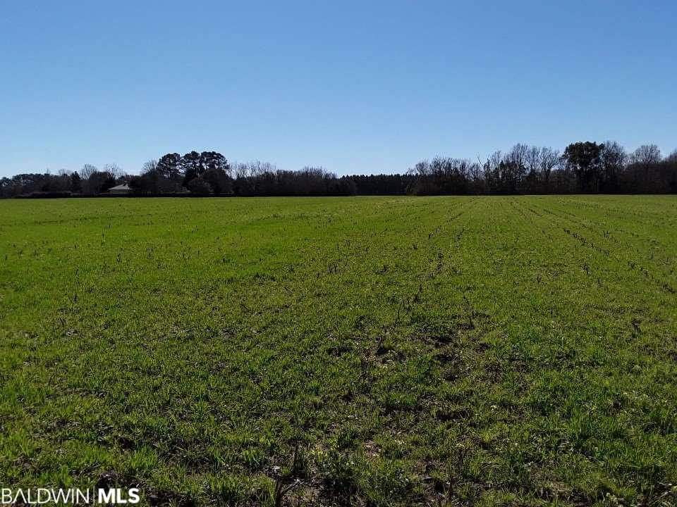 Must-See! 10-Acre Level and Clear lot that's very Accessible to Highway 59, Baldwin Beach Express, and I-10! This rural property is not far from the sought after amusement park OWA & shopping, unparalleled Gulf beaches, and the entertainment hubs of Pensacola and Mobile! Brand New survey on file!   This Flat, High and Dry, and  Construction-Ready lot is just waiting for you to turn your dream home into a reality!  See MLS 282939 and 282961 for sold comps.  Per seller-outside city limits, inside jurisdiction.