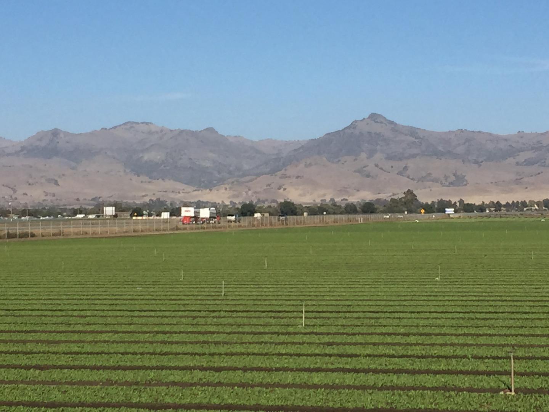 Terrain pour l Vente à San Felipe Road San Felipe Road Hollister, Californie 95023 États-Unis