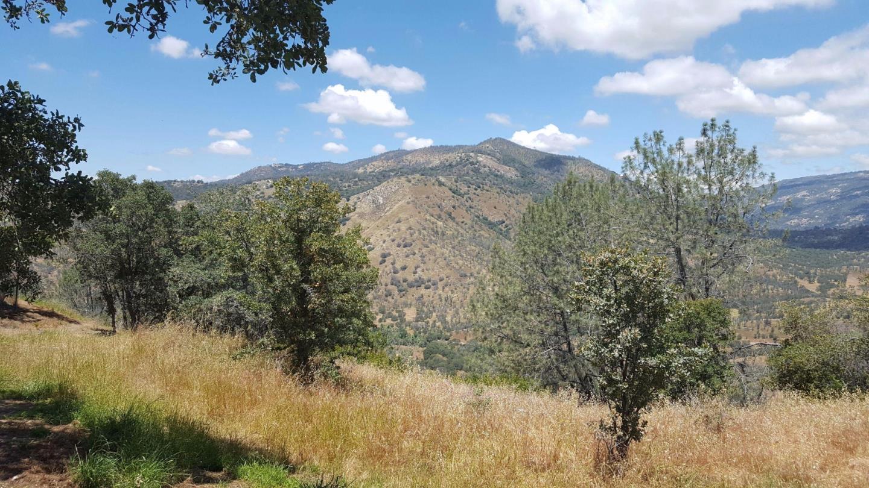 土地 為 出售 在 29170 TERESA SPRING Road Tollhouse, 加利福尼亞州 93667 美國