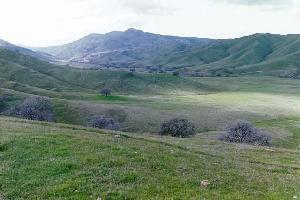 Terrain pour l Vente à W BILLIE WRIGHT Road W BILLIE WRIGHT Road Los Banos, Californie 93635 États-Unis