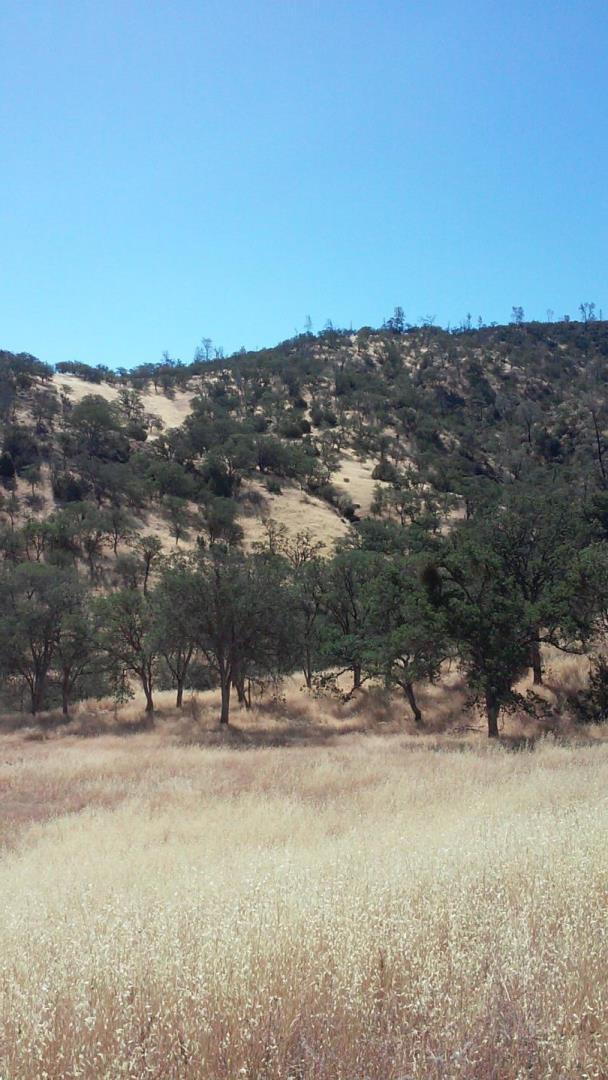 Terrain pour l Vente à Parkfield Coalinga Road Parkfield Coalinga Road San Miguel, Californie 93451 États-Unis
