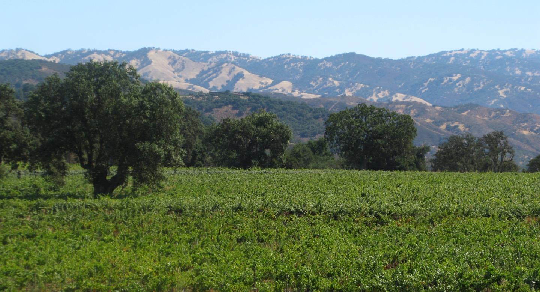 Земля для того Продажа на Cachagua Carmel Valley, Калифорния 93924 Соединенные Штаты