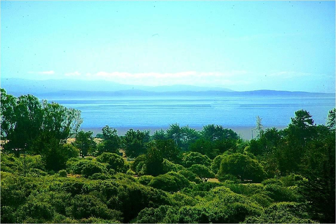 Terreno por un Venta en 610 SEA VIEW Terrace Watsonville, California 95076 Estados Unidos