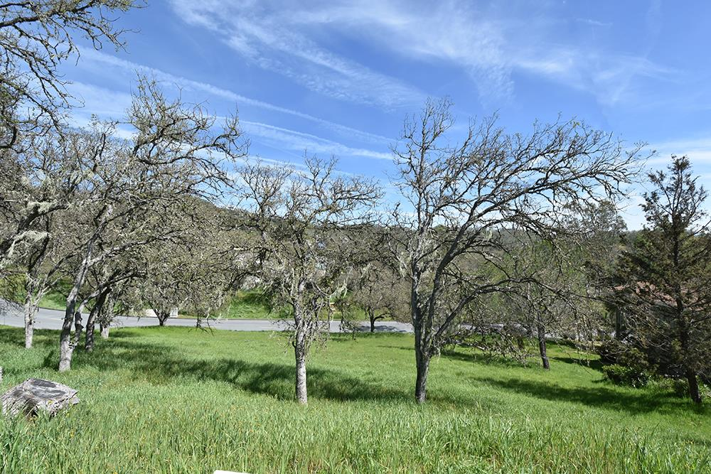 Additional photo for property listing at 2451 Captains Walk 2451 Captains Walk Bradley, California 93426 Estados Unidos