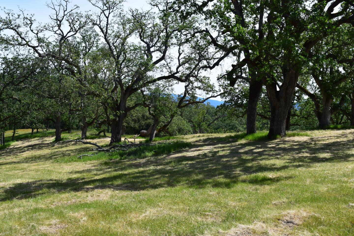 Additional photo for property listing at 13 Long Ridge Trail  Carmel, カリフォルニア 93923 アメリカ合衆国