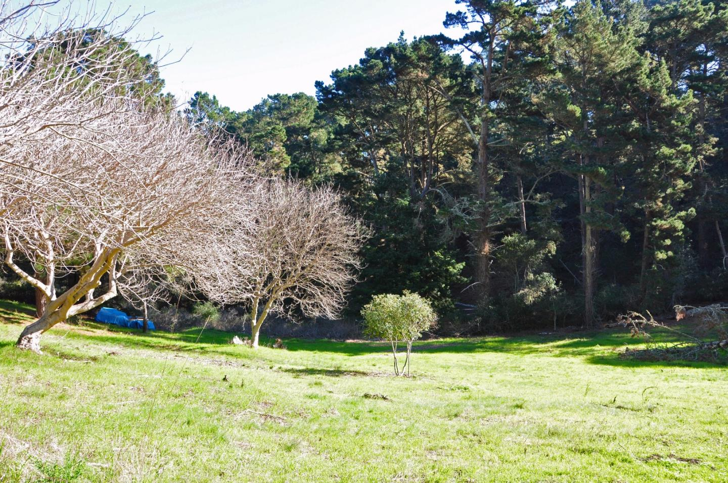 Additional photo for property listing at 514 Loma Alta Road  Carmel, Californie 93923 États-Unis