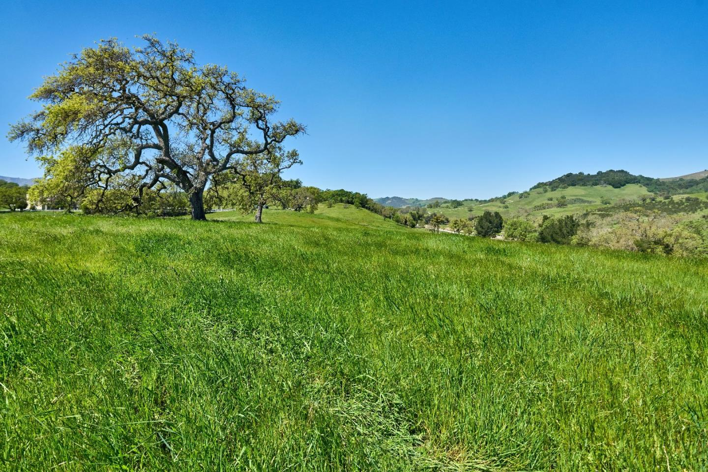 Additional photo for property listing at 17385 Uvas Road  Morgan Hill, California 95037 United States
