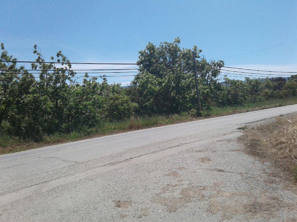 Additional photo for property listing at San Juan Hollister  Hollister, カリフォルニア 95023 アメリカ合衆国