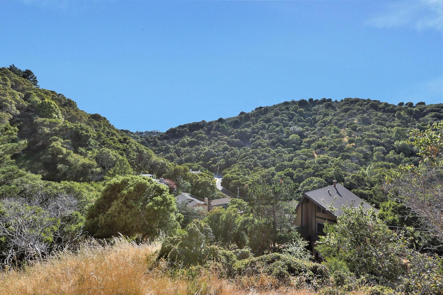 Additional photo for property listing at Longfellow Drive  Belmont, カリフォルニア 94002 アメリカ合衆国