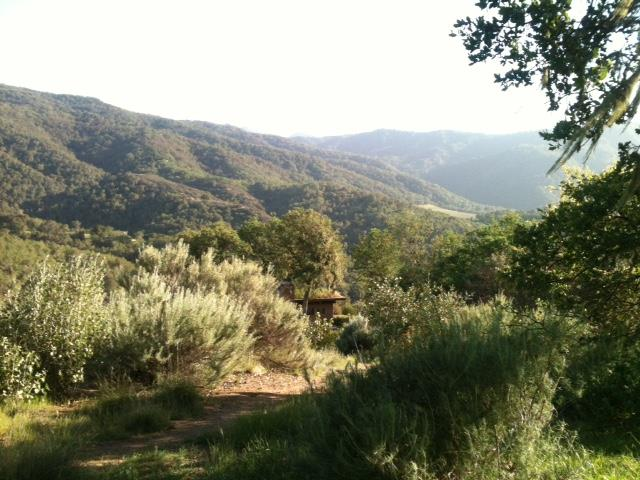 Additional photo for property listing at 20785 Cachagua Road  Carmel Valley, 加利福尼亞州 93924 美國