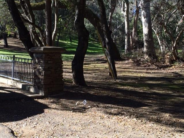 Additional photo for property listing at Wildcat Road  Saratoga, California 95070 United States