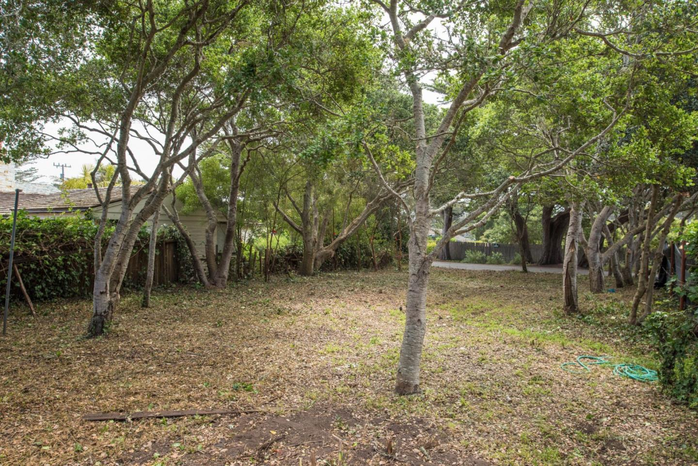 Additional photo for property listing at Isabella Avenue  Carmel, California 93923 United States