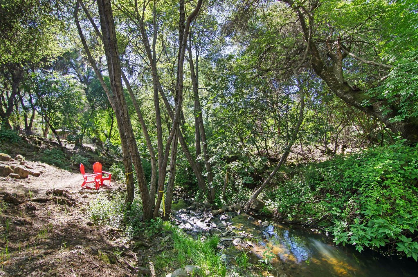 Additional photo for property listing at 14572 Sun Forest Drive  Penn Valley, 加利福尼亞州 95946 美國