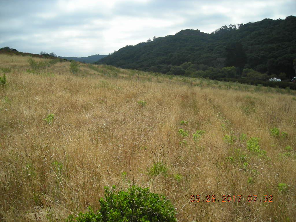 Additional photo for property listing at 46 Long Valley  Castroville, California 95012 Estados Unidos