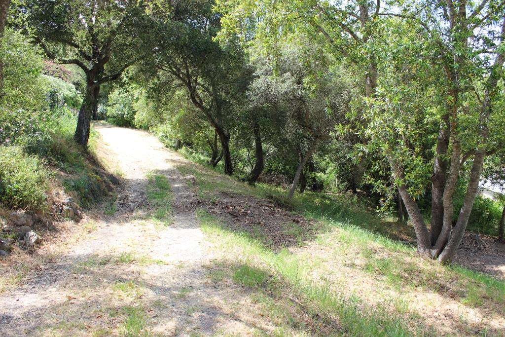 Additional photo for property listing at Beckwith Road  Los Gatos, California 95030 Estados Unidos
