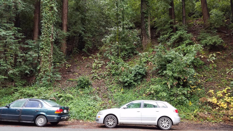 土地 為 出售 在 East Zayante Road Felton, 加利福尼亞州 95018 美國