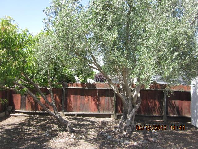 Additional photo for property listing at 1000 Powell Street  Hollister, California 95023 United States