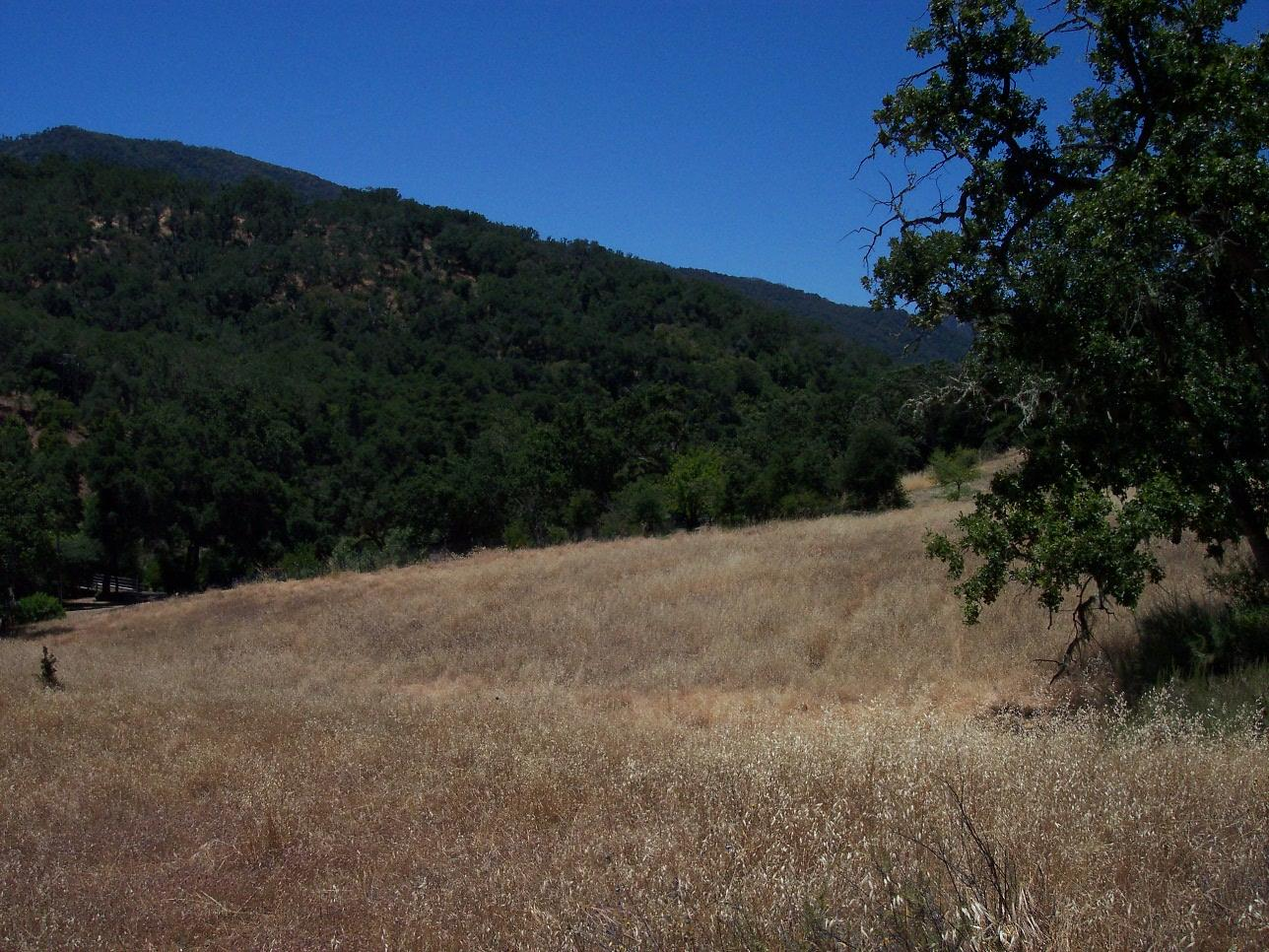 Land for Sale at Cachagua Road Carmel Valley, California 93924 United States