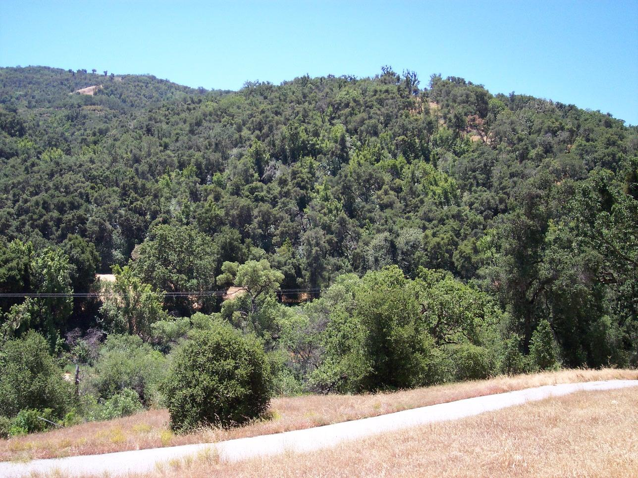 Additional photo for property listing at Cachagua Road  Carmel Valley, カリフォルニア 93924 アメリカ合衆国