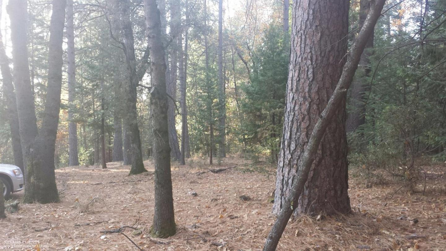 Additional photo for property listing at Countrywood Lot 24 Lane  Nevada City, 加利福尼亞州 95959 美國