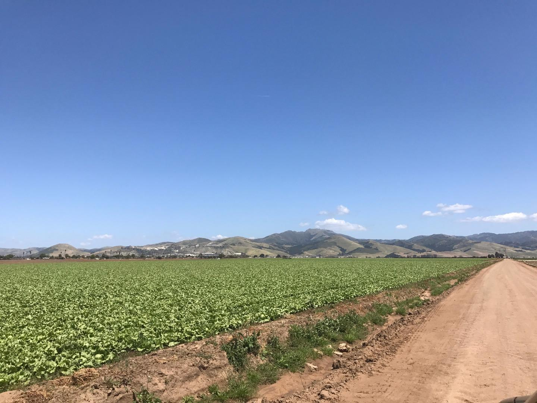 118 San Juan Grade Road SALINAS CA 93906, Image  2