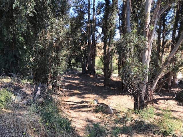 Additional photo for property listing at 700 Duncan Avenue  San Juan Bautista, California 95045 United States