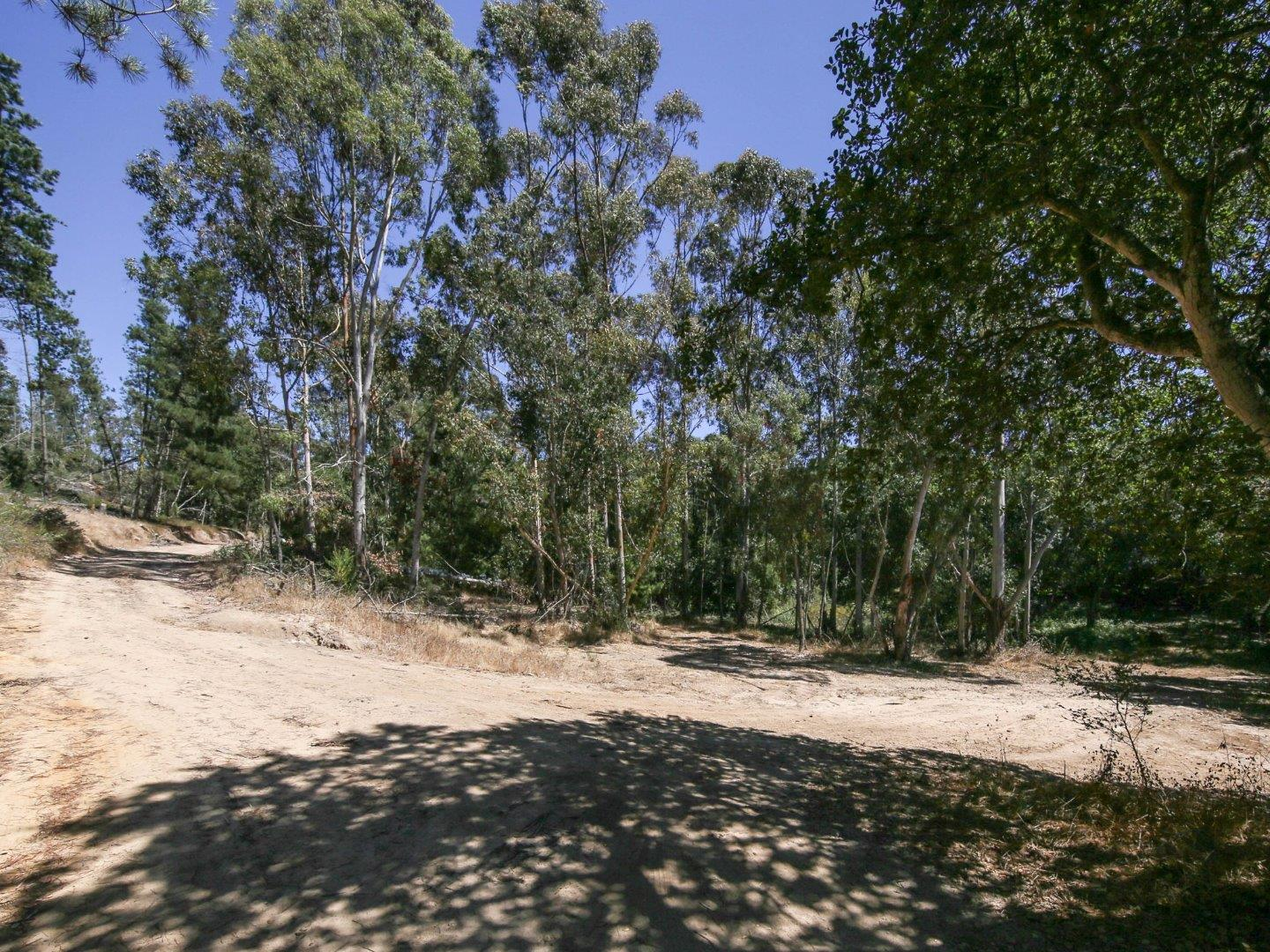 Additional photo for property listing at 45 Crazy Horse Canyon Road  Prunedale, California 93907 United States