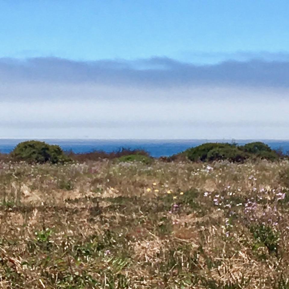 Single Family Home for Sale at 240 Via Pontos Way La Selva Beach, California 95076 United States