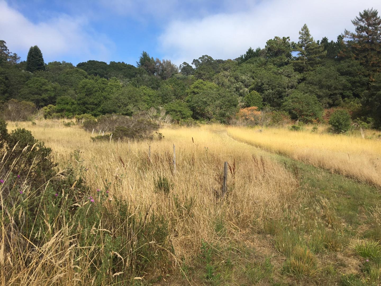 土地 のために 売買 アット Larkin Valley Road Watsonville, カリフォルニア 95076 アメリカ合衆国