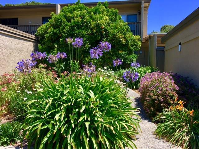 Таунхаус для того Продажа на 89 Montsalas Drive Monterey, Калифорния 93940 Соединенные Штаты