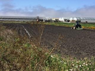 土地 為 出售 在 12745 Via Linda Castroville, 加利福尼亞州 95012 美國