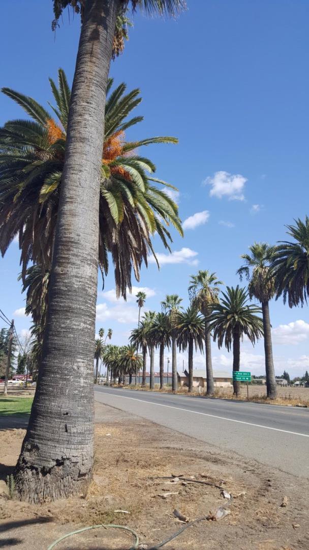 Einfamilienhaus für Verkauf beim 24408 Robertson Boulevard 24408 Robertson Boulevard Chowchilla, Kalifornien 93610 Vereinigte Staaten