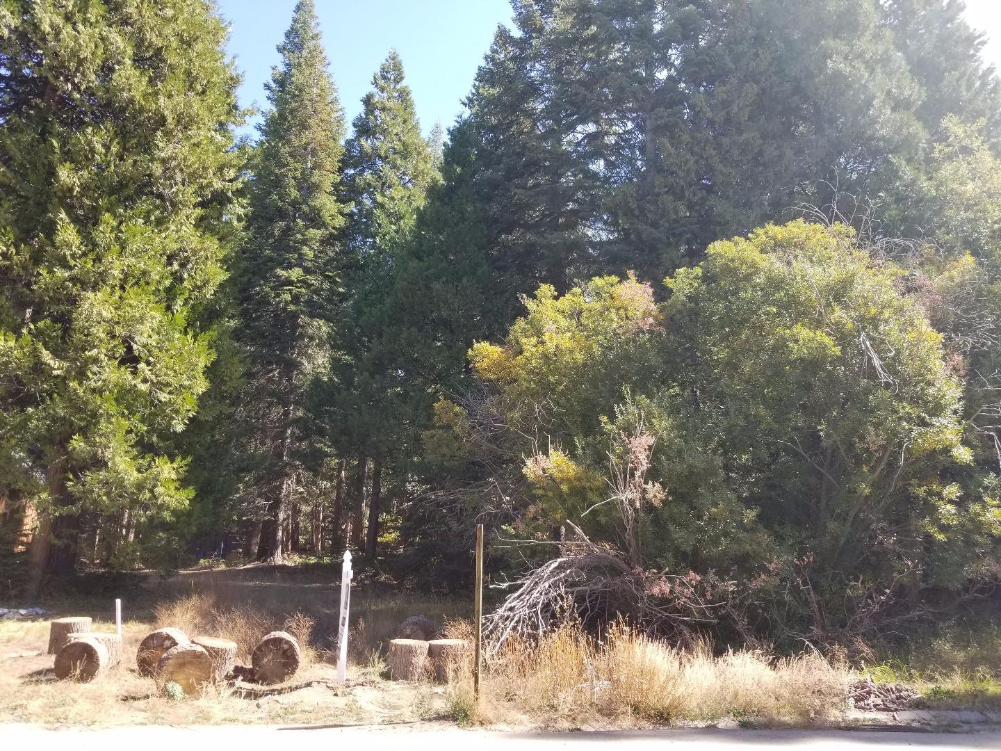 Terreno por un Venta en LOT 24 Cedar Ridge Lane LOT 24 Cedar Ridge Lane Shaver Lake, California 93664 Estados Unidos