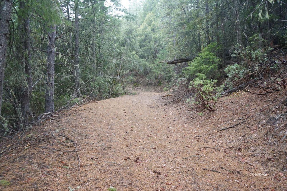 Земля для того Продажа на 1371 Fs Road 30n69 1371 Fs Road 30n69 Hayfork, Калифорния 96041 Соединенные Штаты