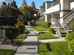 Кондоминиум для того Продажа на 3053 Risdon Drive 3053 Risdon Drive Union City, Калифорния 94587 Соединенные Штаты