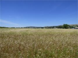 Land for Sale at Barrett Avenue Barrett Avenue Morgan Hill, California 95037 United States