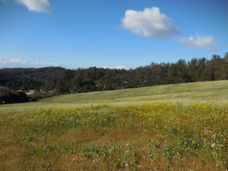 土地 為 出售 在 815 Maher Road 815 Maher Road Royal Oaks, 加利福尼亞州 95076 美國