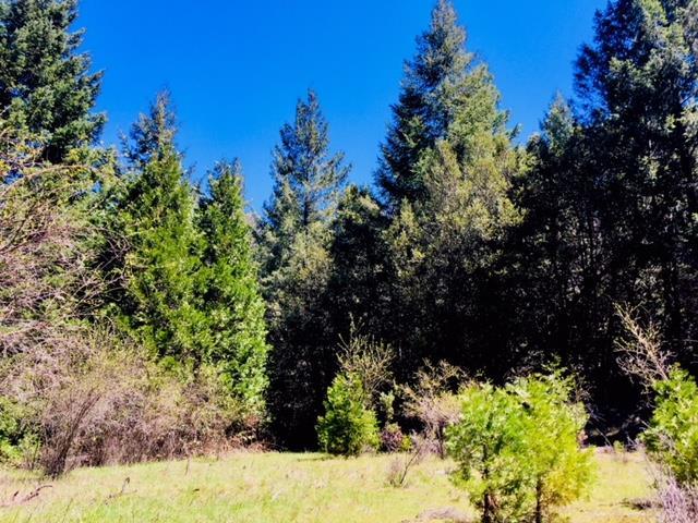 Земля для того Продажа на 5340 String Canyon Road 5340 String Canyon Road Somerset, Калифорния 95684 Соединенные Штаты