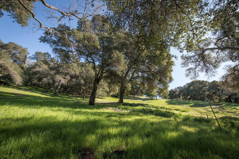 Land for Sale at Alpine Road Alpine Road Portola Valley, California 94028 United States