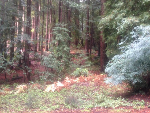 Land for Sale at Dry Well Road Dry Well Road San Lorenzo, California 95006 United States