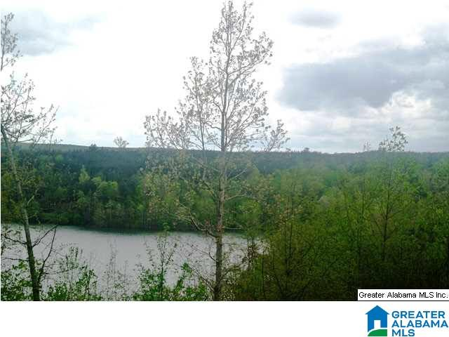 30 STILLWATER RD 1, DOUBLE SPRINGS, AL 35553