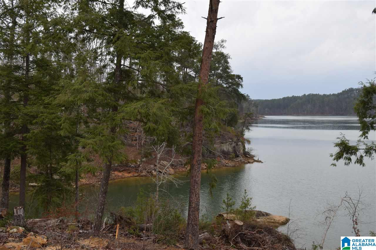 Lot 85 SIPSEY OVERLOOK DR Lot 85, DOUBLE SPRINGS, AL 35553