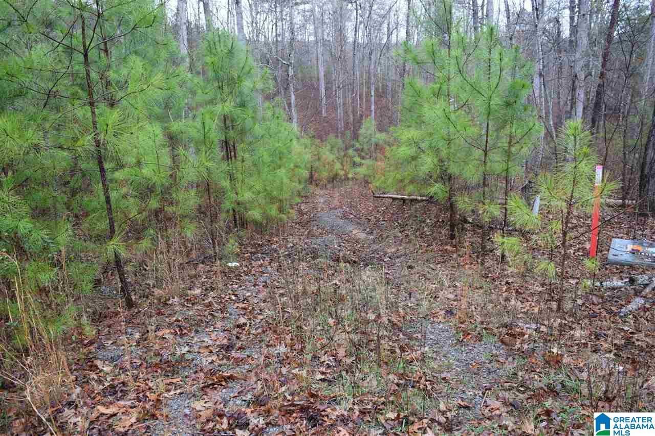 Lot 11 WINDING CREEK RD Lot 11, ARLEY, AL 35541