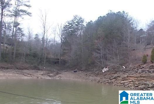 LAKE POINT CIR 7, ARLEY, AL 35541
