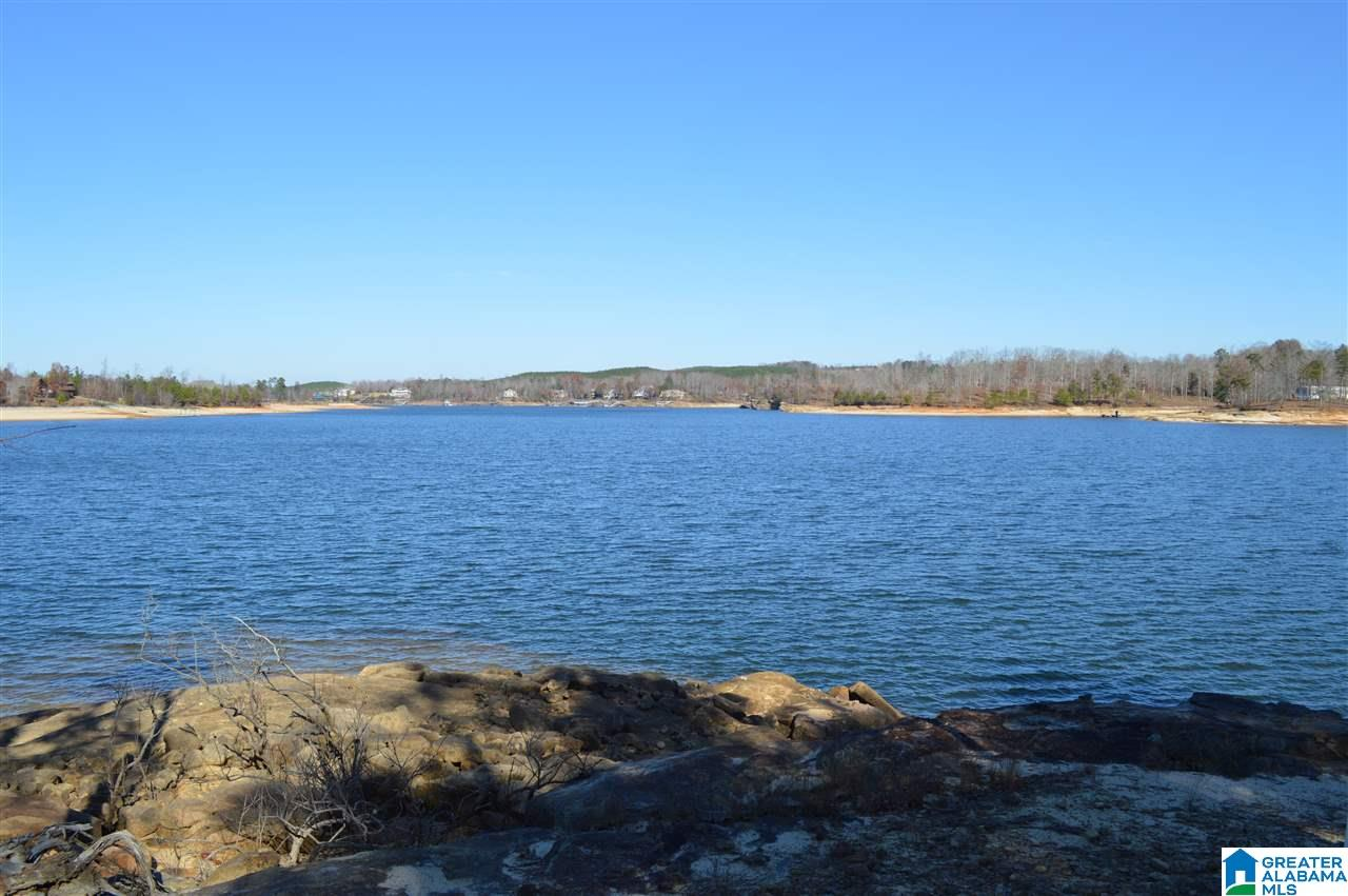S STONEY POINT RD 138, DOUBLE SPRINGS, AL 35553