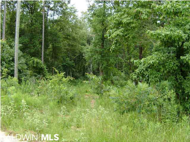 0 Timber Creek Court, Axis, AL 36505
