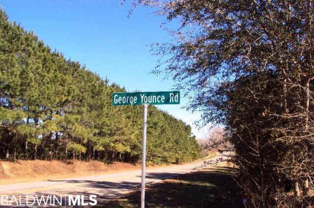 14066 George Younce Rd, Foley, AL 36535