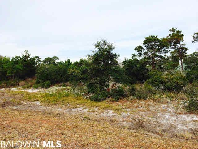 0 Pine Run Drive, Orange Beach, AL 36561