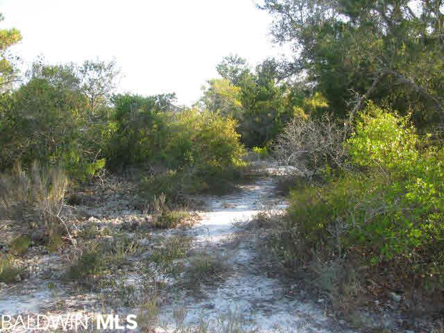 0 Marlin Key Drive, Orange Beach, AL 36561