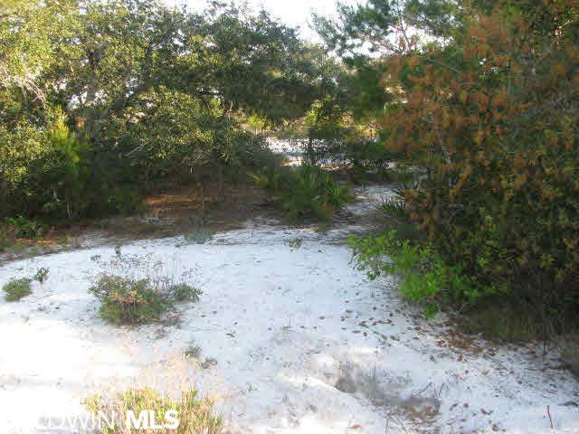 0 Marlin Key Drive, Orange Beach, AL, 36561